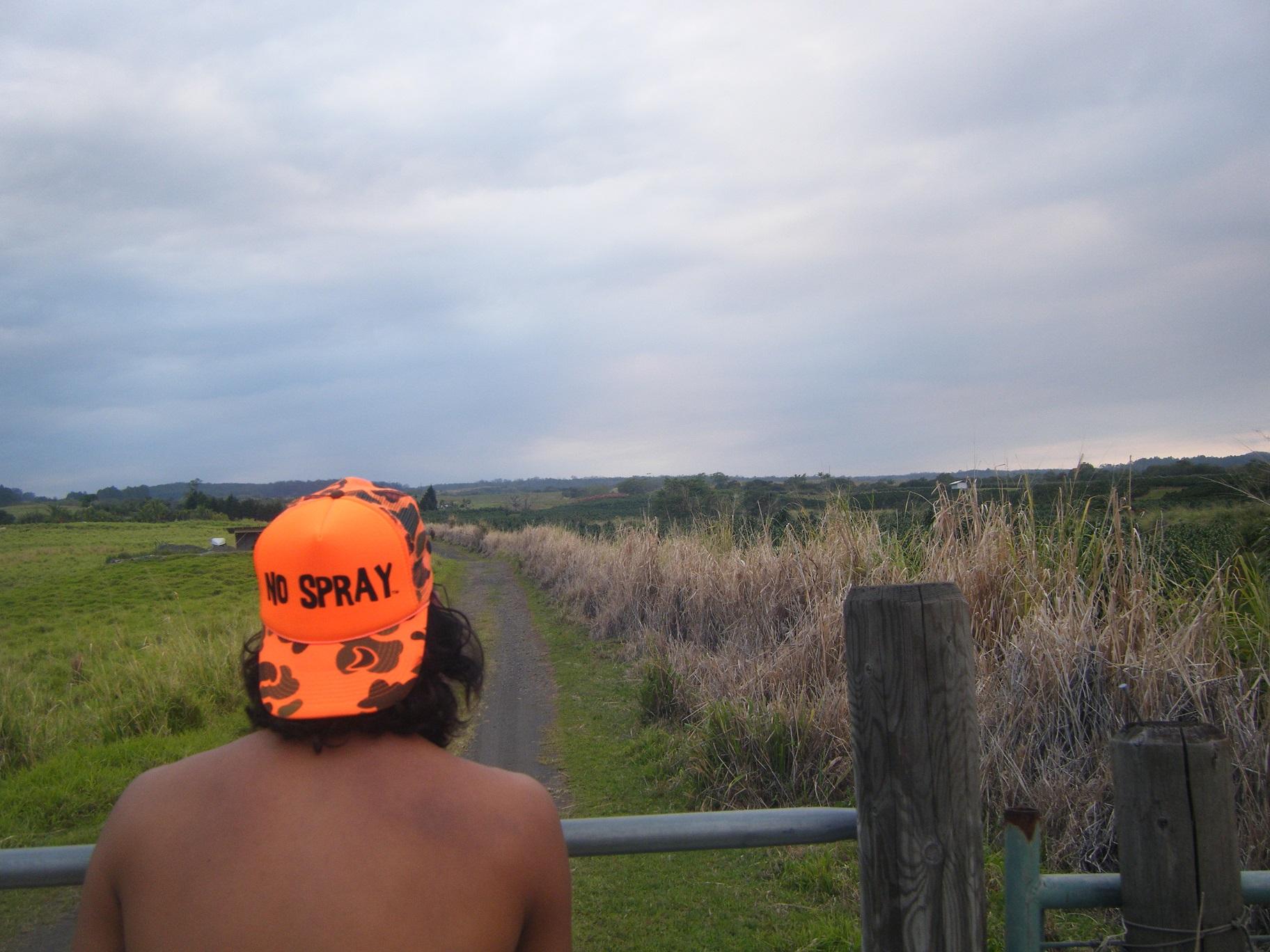 Spraying in the hillside of Hawaii