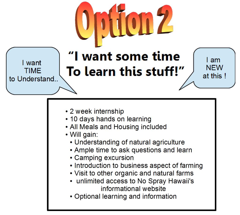 Website OPTION 2 for INTERN